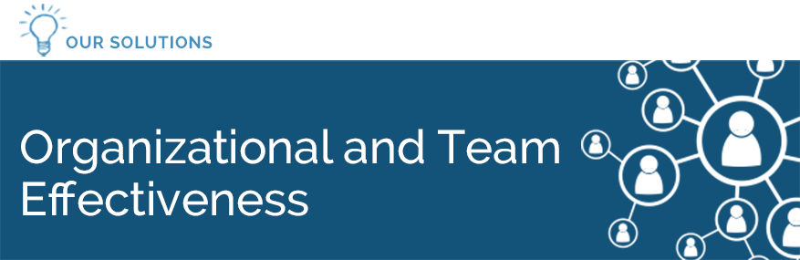 Organizational and Team Effectiveness